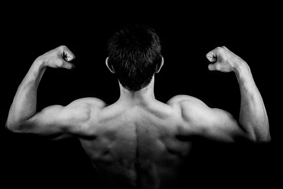 Musculação e construção de massa magra